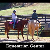 ammenities_equestrian_center.jpg
